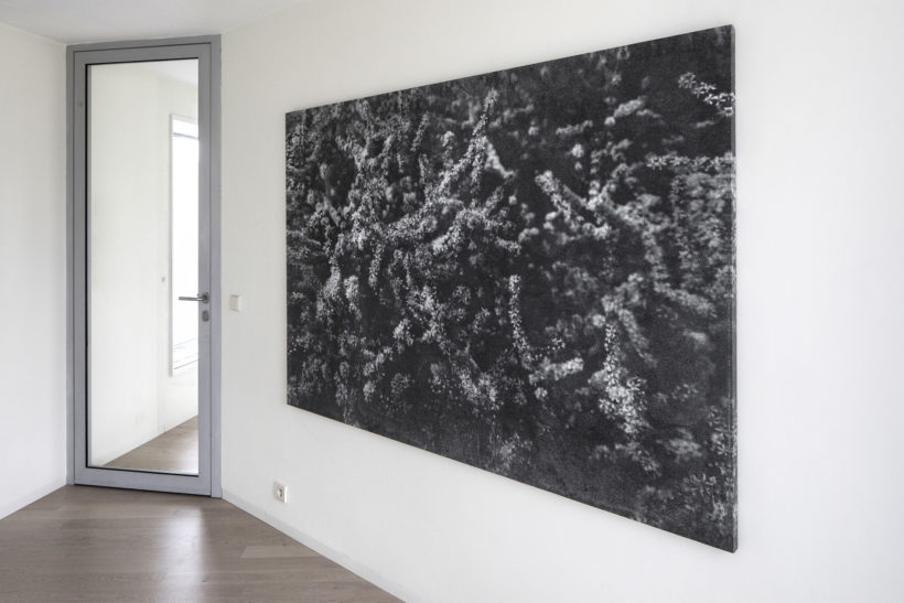 print on canvas bromoil 140x200cm Tomáš Rasl